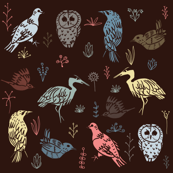 stencil bird flowers screenshot